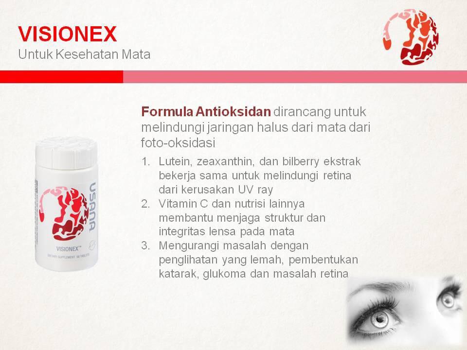 visionex usana indonesia