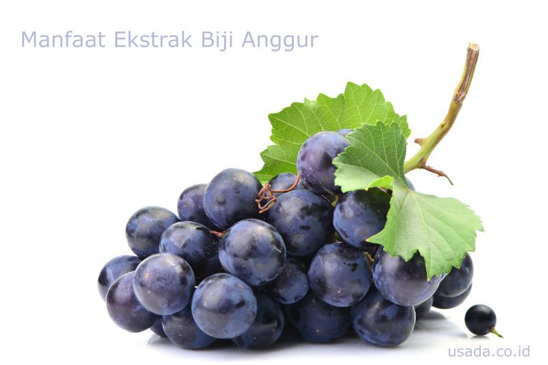 5 Manfaat Ekstrak Biji Anggur Untuk Kesehatan