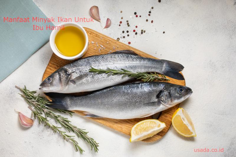 5 Manfaat Minyak Ikan Untuk Ibu Hamil